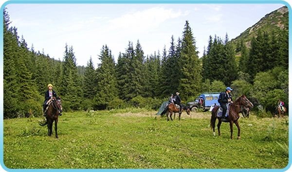 Horse riding, Horse riding tours.